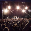 TOTO<br /> Biri Travbane 24/07/2010<br /> ---<br /> Foto: Jonny Isaksen