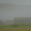 Liomseter 06/09/2008  --- Foto: Jonny Isaksen