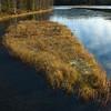 Skålmyrdammen 04/11/2007   --- Foto: Jonny Isaksen