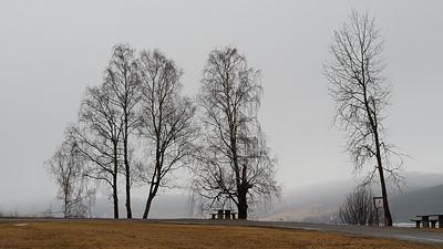 Kremmerodden  02/04/2016   --- Foto: Jonny Isaksen