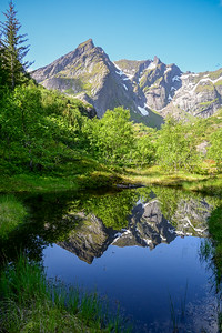 Nusfjord  27/06/2021 Foto: Jonny Isaksen