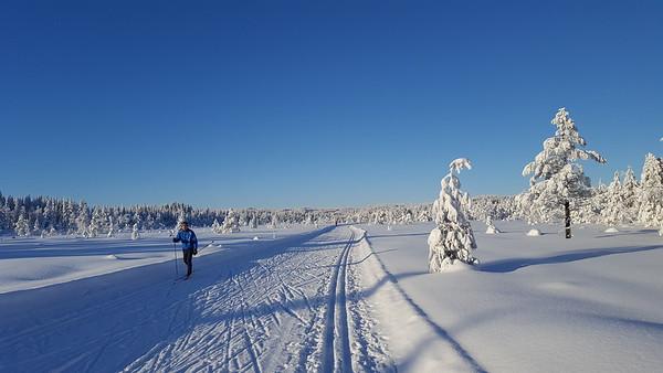Gjøvik  21/01/2018   --- Foto: Jonny Isaksen