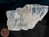 "Selenite (CaSO4 * H20) with ""fishtail"" habit, Bastrop County, Texas"
