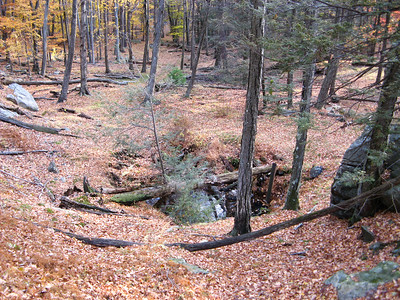 Pine Swamp/Hogencamp Mines - 11/1/08