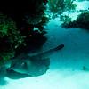 Rottness Dive-32
