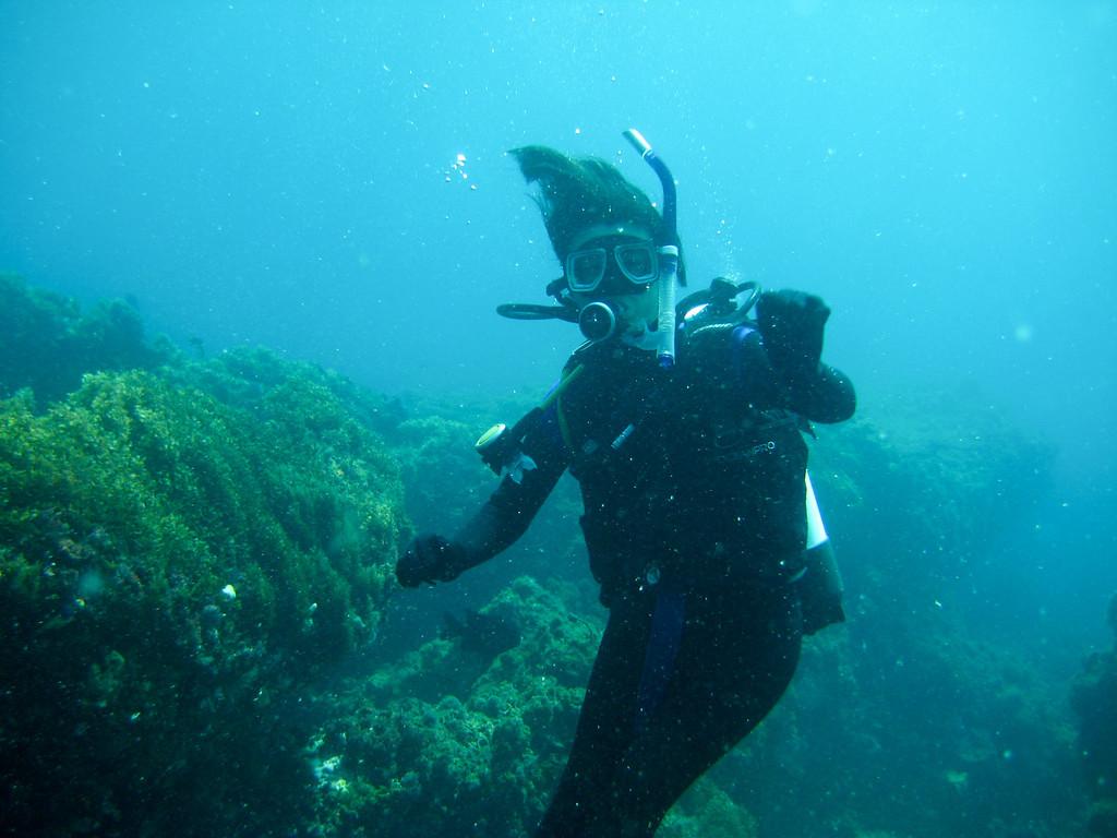 Rottness Dive-8