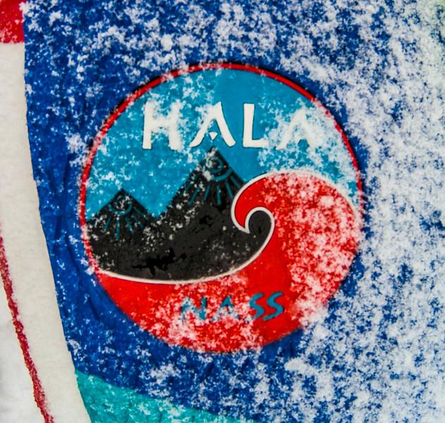 Nala loving the snow