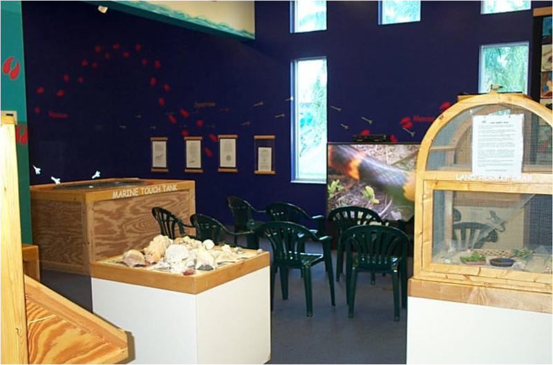 Imaginarium Hands-On Museum and Aquarium (Fort Meyers, FL) - Nano Lab Project (before)