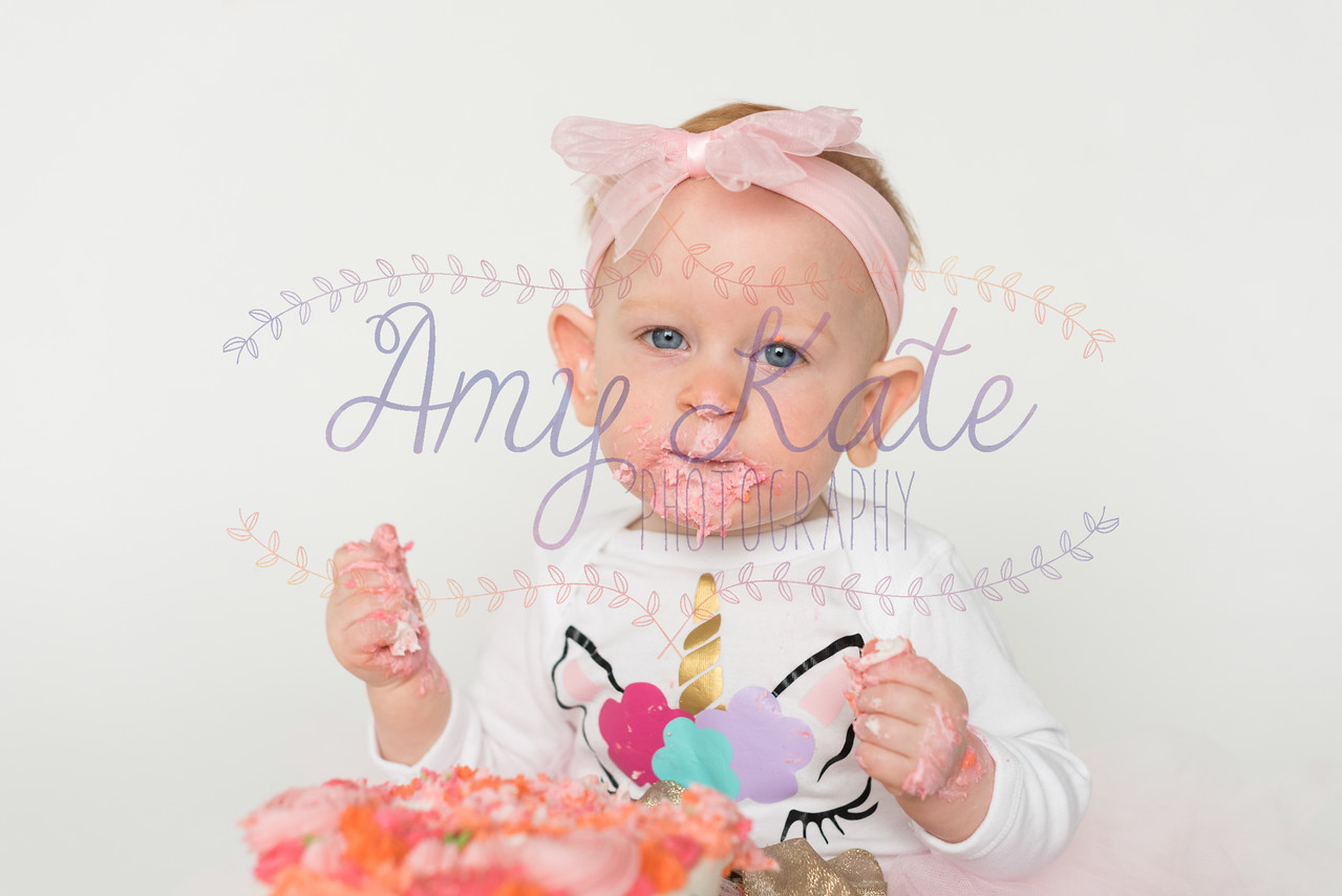 Mini_Audrey_Smash_Cake_20180317_011