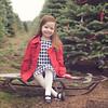 anja-christmas-mini-2014-21