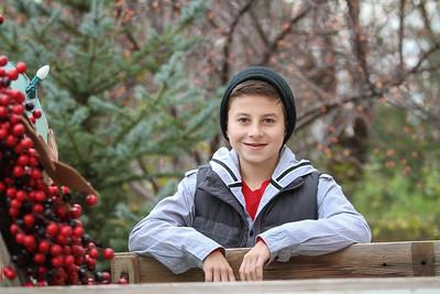 Christmas Mini 2-203