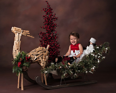 Tran 2014 Christmas