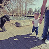 Learn more about Zoo Park Lake Family Mini-Shoots and Specials!! Brandi@brandihill.com