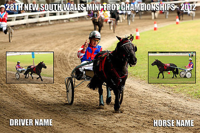 """<u>HOW TO ORDER</u>  To order photos from the 28th New South Wales Mini Trots Championships simply;  1) Click on the <a href=""""http://robshots.smugmug.com/MiniTrots/NSW-Championships-2012"""">""""Mini Trots""""</a> tab at the top of the page. Galleries are listed by race number.  2) Find your photo. All you need to quote is . the file name of the photo which should look like """"mini_trots_01234""""  3) To order click <a href=""""mailto:robshots@hotmail.com"""">Here</a> to email     <u> PRINT PRICES</u>  <b>$10 - 6X4 </b> inch quality matt print with any text and inserts you select. Click <a href=""""mailto:robshots@hotmail.com"""">Here</a> to order by email    <b>$25 - 8x12 (A4) </b> inch quality matt print with any text and inserts you select. Click <a href=""""mailto:robshots@hotmail.com"""">Here</a> to order by email    <b>$35 - 10x15 </b> inch quality matt print with any text and inserts you select. Click <a href=""""mailto:robshots@hotmail.com"""">Here</a> to order by email   <b>$50 - 12x18 </b> inch quality matt print with any text and inserts you select. Click <a href=""""mailto:robshots@hotmail.com"""">Here</a> to order by email     <u>POSTAGE</u>  Postage on all prints is just $5 Australia wide.  <u>CONTACT DETAILS</u>  EMAIL - <a href=""""mailto:robshots@hotmail.com"""">robshots@hotmail.com</a>  <u>METHODS OF PAYMENT ACCEPTED</u>  - Bank Transfer  - Money Order  I am more than happy to answer any other questions you may have so feel free to <a href=""""mailto:robshots@hotmail.com"""">Email Me</a>  I'd love to hear from you!  Rob  ABN - 24815251773"""