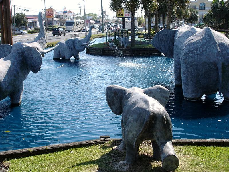 Elephants in the lagoon.
