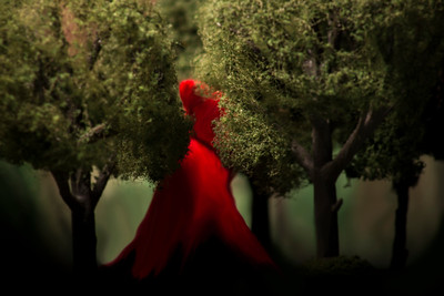 "Depiction of Fiction: ""To Grandmother's House We Go"" (Little Red Riding Hood)"