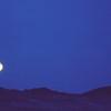 Blue Moon.