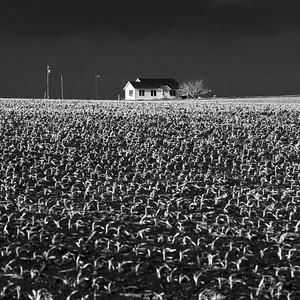 Farmhouse, Bellfalls, Texas
