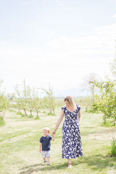 Apple Orchard-19