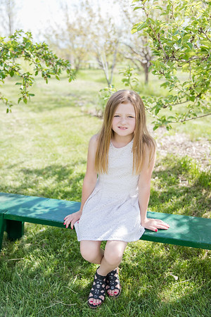 Douglas Apple Orchard-4