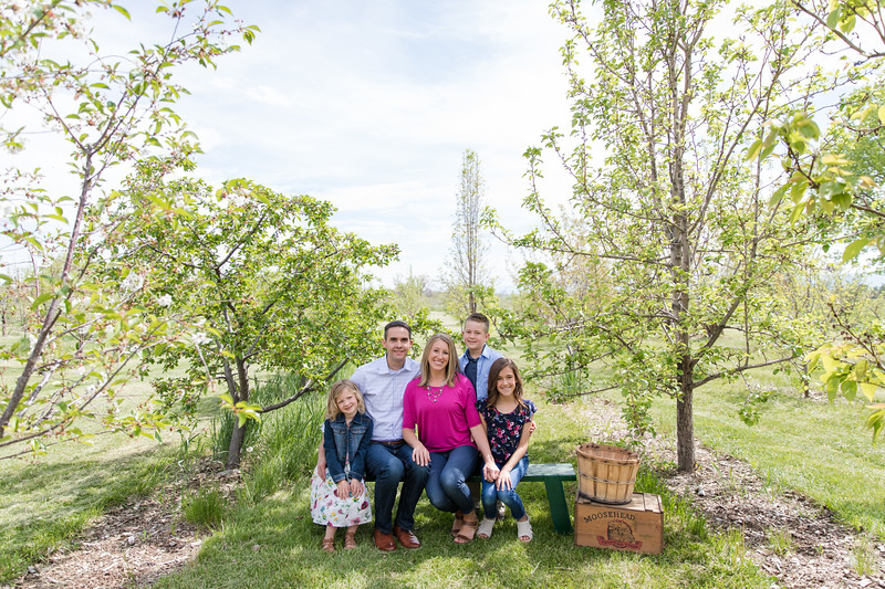 Helm Apple Orchard-12