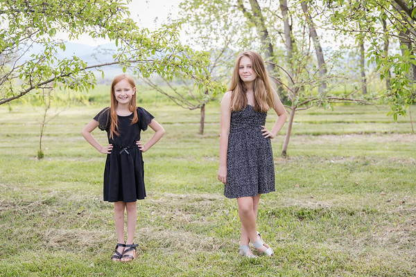 Apple Orchard-23