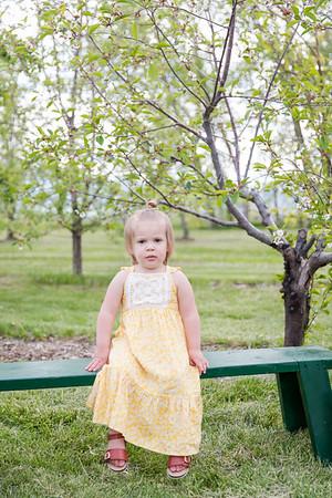Apple Orchard-5