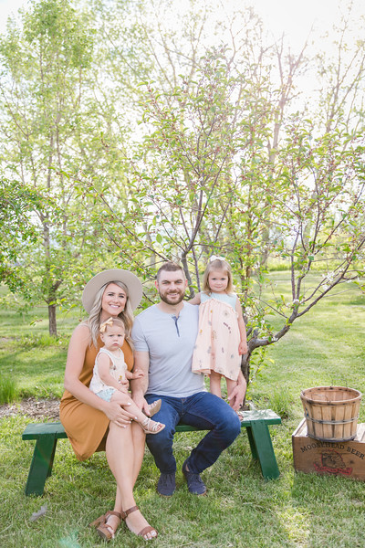 Apple Orchard-4