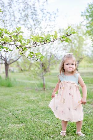 Apple Orchard-12
