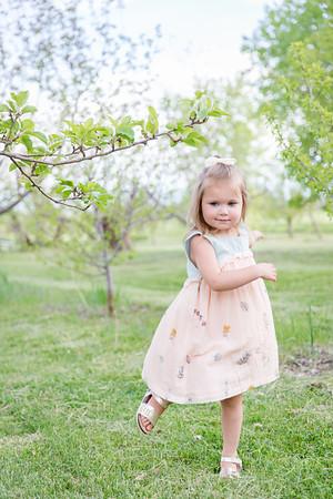 Apple Orchard-13