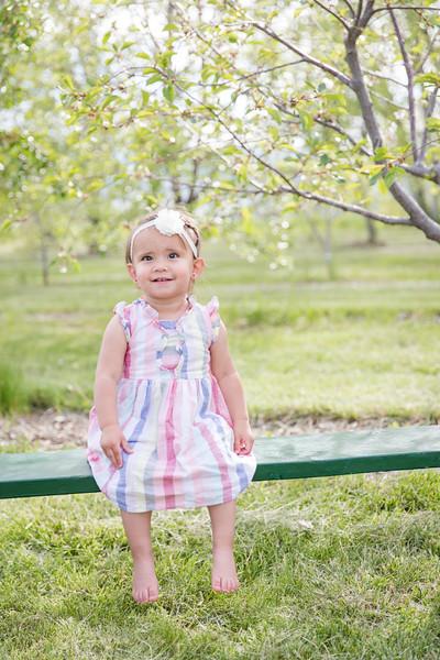 Apple Orchard-10