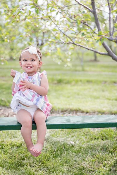 Apple Orchard-11