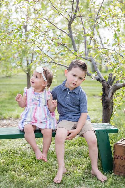 Apple Orchard-6