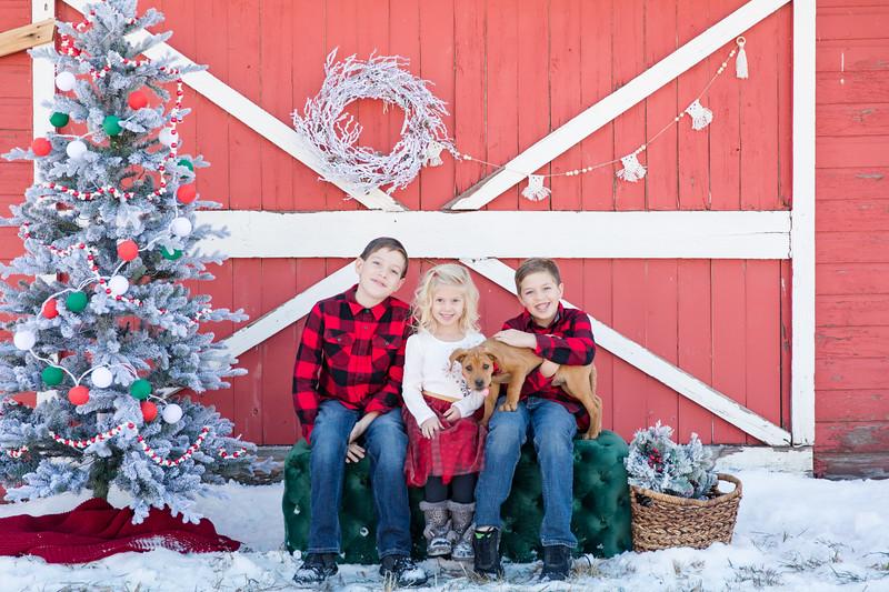 Bartons Christmas-3