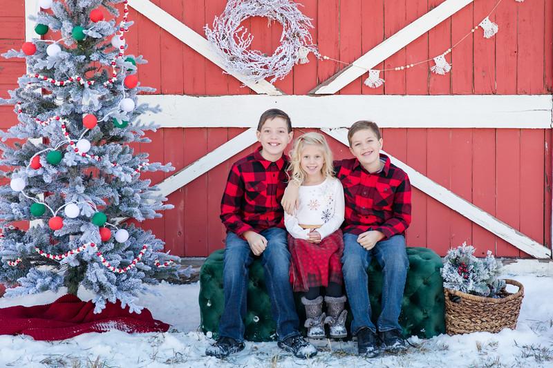 Bartons Christmas-2