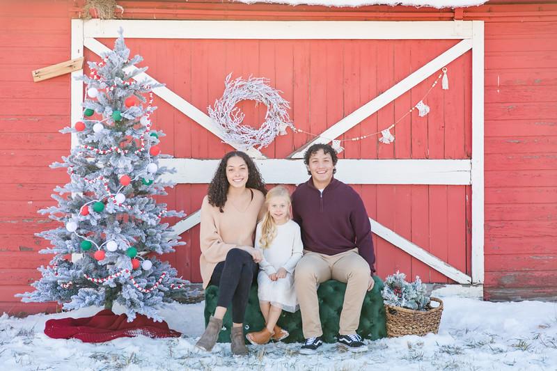 Branvold Christmas-6