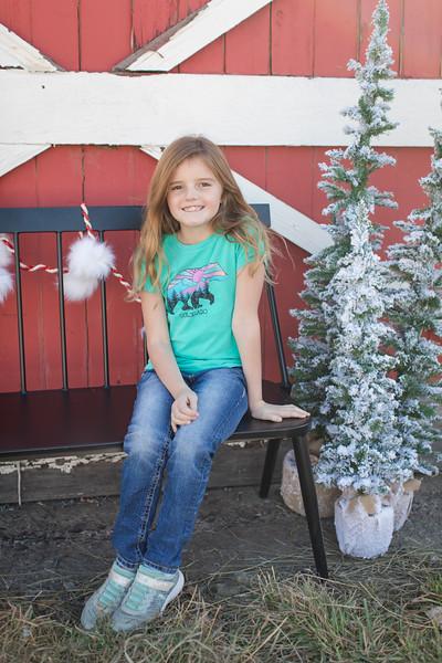 Cate Christmas Mini-2
