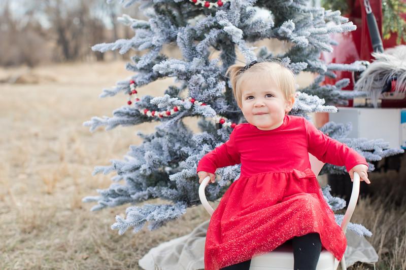 Sill Christmas Mini-16