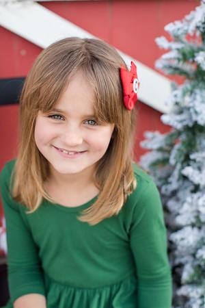 Maron Christmas Mini-5