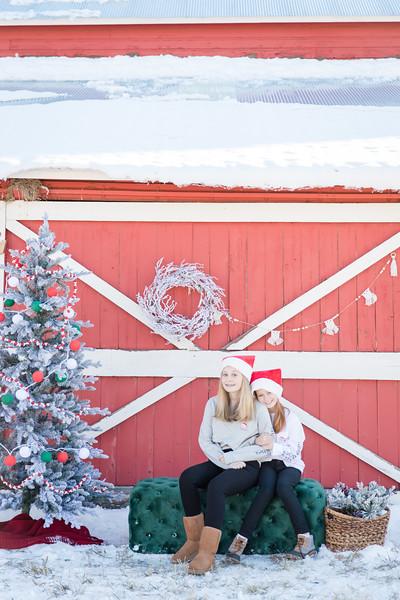 Mould Christmas-15