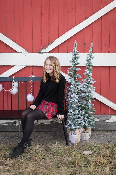 Moulds Christmas Mini-4