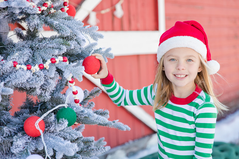 Panigutti Christmas-26
