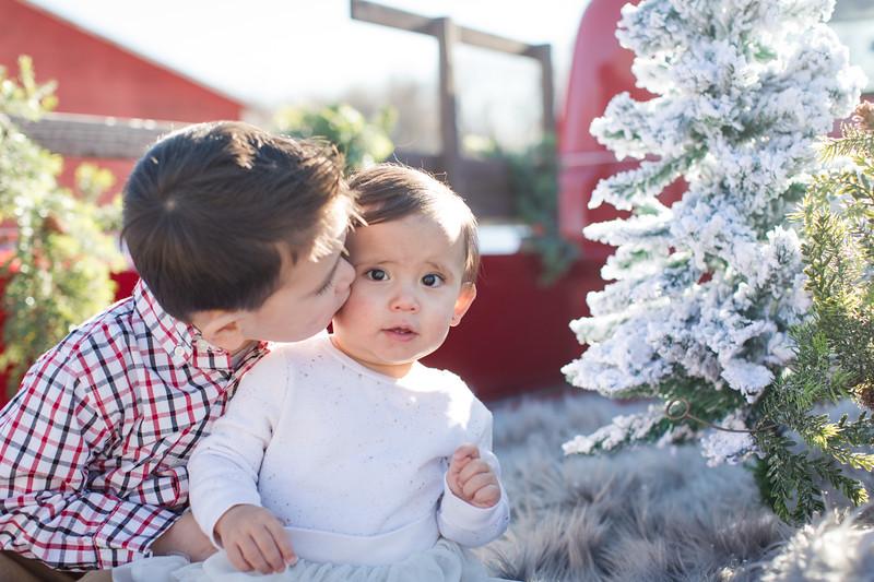 Terheggen Christmas Mini-3