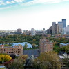 "<font size=""3"" face=""Verdana"" font color=""white"">Loring Park</font> <font size=""3"" face=""Verdana"" font color=""#5CB3FF"">View of Loring park and downtown Minneapolis - photo take from Summit House Condominiums</font> <br> <font size = ""1"" font color = ""gray"">Click on photo to see larger size.</font>"