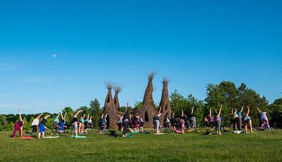 90     1   RobertEvansImagery com Minnesota Landscape Arboretum June 13th 2019  DSC06187