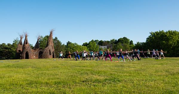 85     1   RobertEvansImagery com Minnesota Landscape Arboretum June 13th 2019  DSC06165