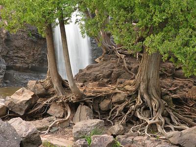 Gooseberry Lower Falls 7
