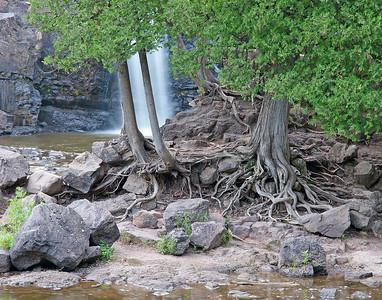 Gooseberry Lower Falls 6