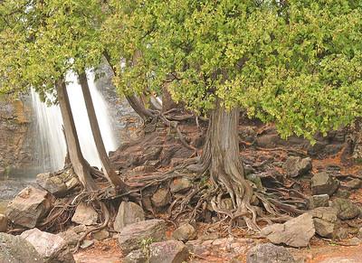 Gooseberry Lower Falls 5