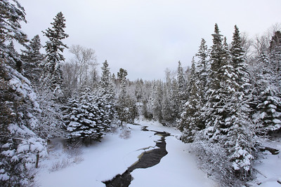 "RIVERS 3830  ""Winter on the Cascade""  Cascade River State Park, MN"